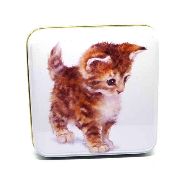 Latta quadrata piccola Best Friends - Cute Kitten Jo Stockdale