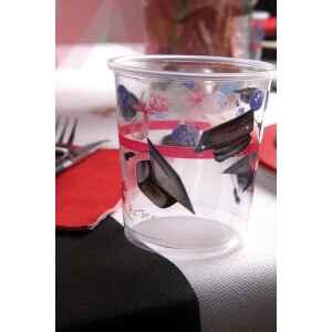 Bicchieri di Plastica PPL Laurea 250 cc 3 confezioni Extra