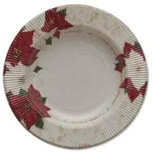 Piatti Fondi di Carta a Righe Stella di Natale 25,5 cm Extra
