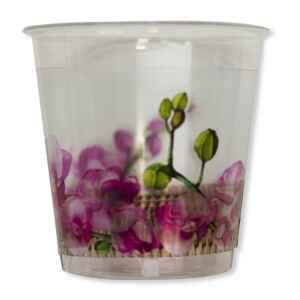Bicchieri di Plastica Armonia 300 cc Extra