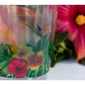 Bicchieri di Plastica Tropical 300 cc Extra