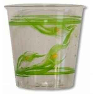 Bicchieri di Plastica Calle Special Day 300 cc 3 Confezioni Extra