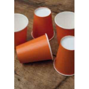 Bicchieri Compostabili Arancione 250 cc Extra