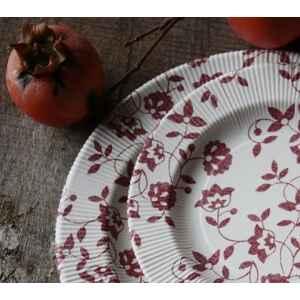 Extra Piatti Piani a Righe Compostabili Natura Rosso 27 cm