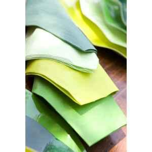 Extra Piatti Piani di Carta a Petalo Verde Prato 21 cm