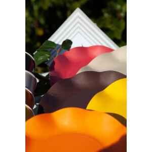 Extra Piatti Piani di Carta Compostabile a Petalo Marrone cioccolato 21 cm