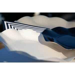 Extra Piatti Piani di Carta Compostabile a Petalo Tortora 27 cm